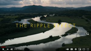Impact with Gal Gadot Ripple Effect